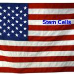 Stem cells on Memorial Day: 5 concrete ways they may help troops