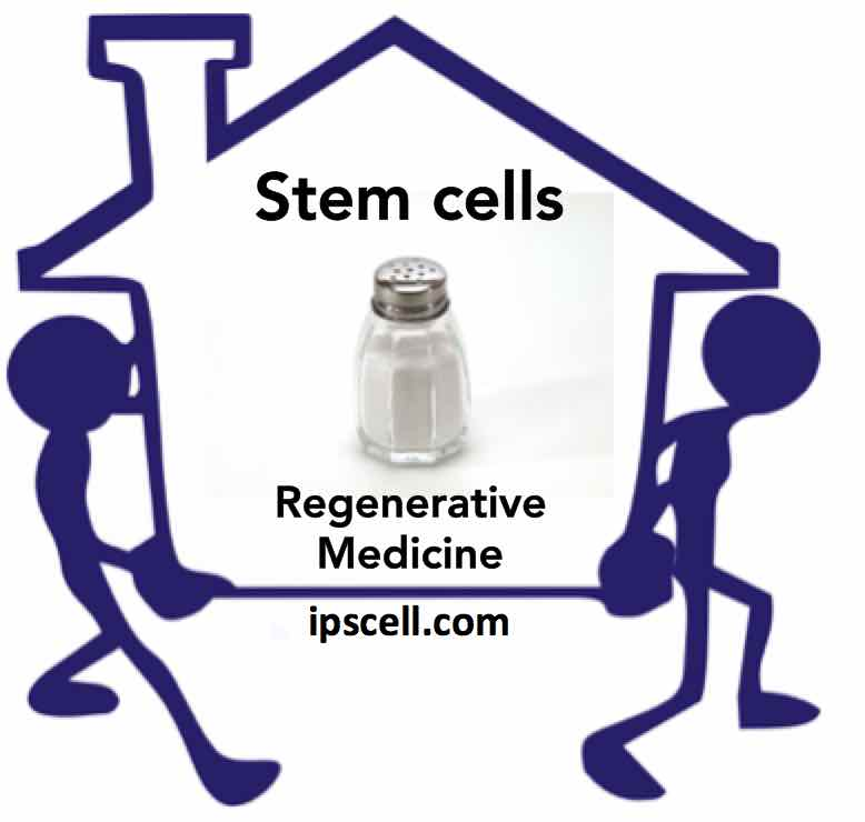 stem-cell-movers-and-shakers