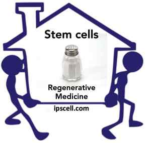 stem cell movers and shakers