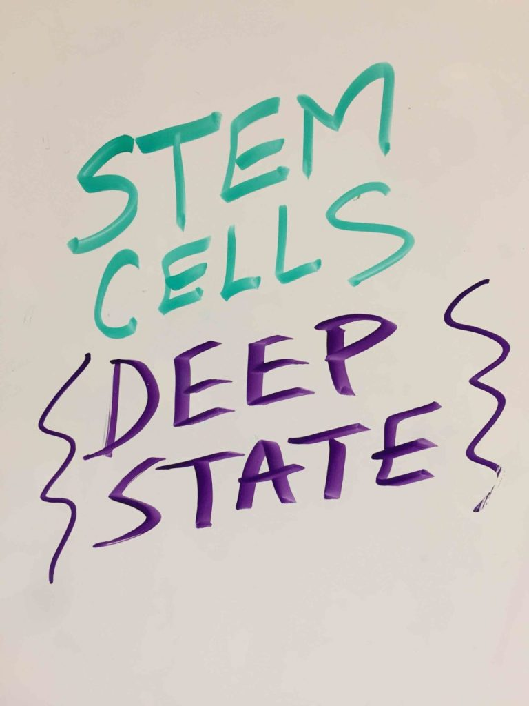 conspiracy-theory-stem-cells-deep-state-e1516141862445