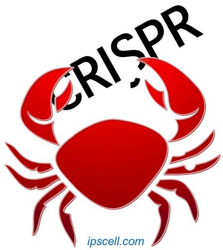 Cancer-CRISPR