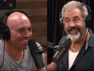Joe Rogan stem cells Mel Gibson