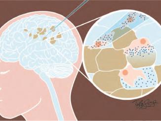 stem cells drug delivery