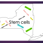 NY stem cell clinic pushes back on lawsuit by AG