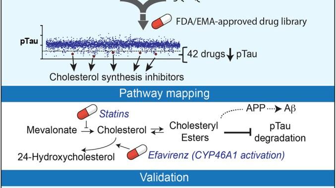 stem cells alzheimer's