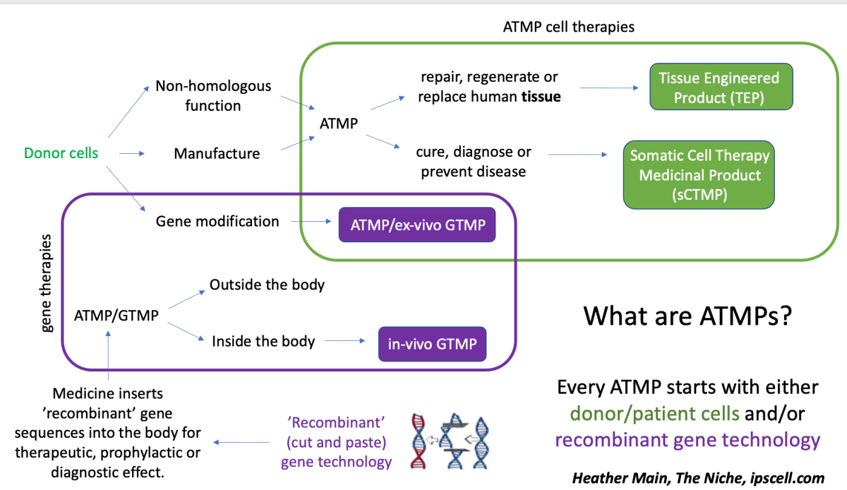 Cell and gene therapy products: what is an ATMP?