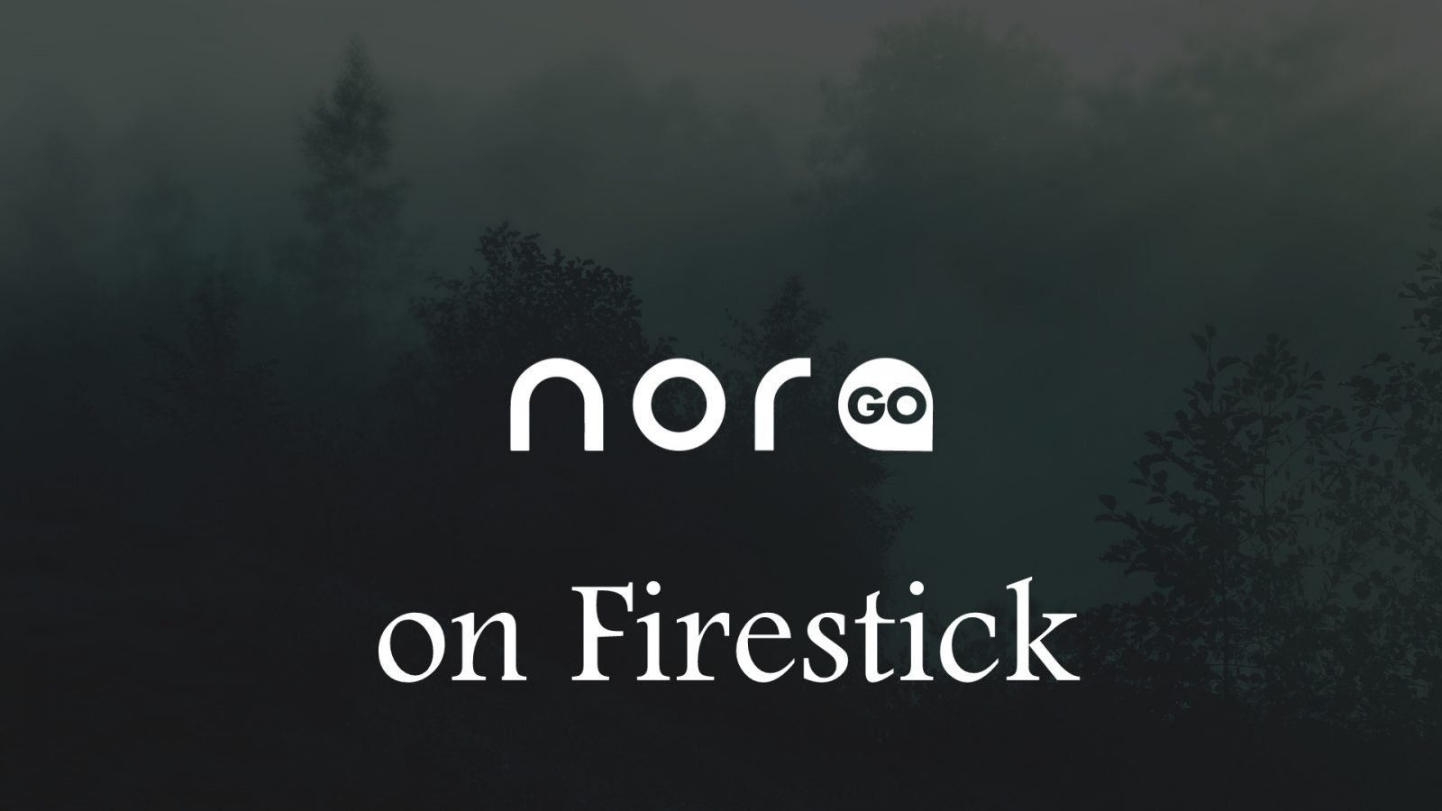 How to install Nora Go on Firestick? [2019] - IPTV Player Guide