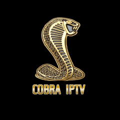 Cobra IPTV: Packages and Installation Guide