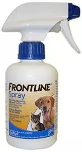 Frontline Spray Review