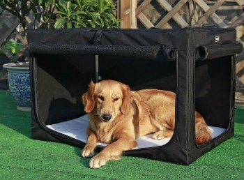 Best Lightweight Dog Crate
