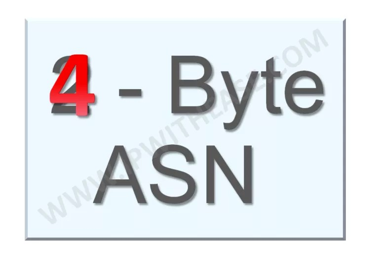 basic-understanding-of-4-byte-asn