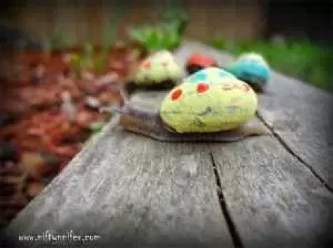 painted-snail-shell-14