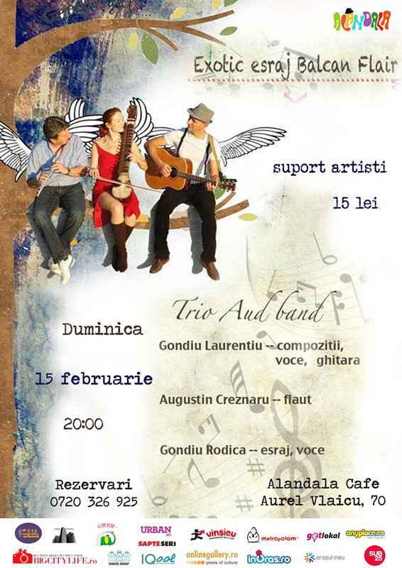 15.02 - Concert Aud band – Exotic esraj Balcan Flair