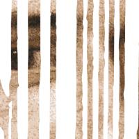 Rousseau: Gizakia libre sortu, kateaturik bizi