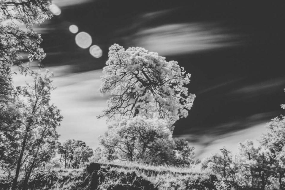Fotografía de larga exposición en blanco y negro por Iram Ortega