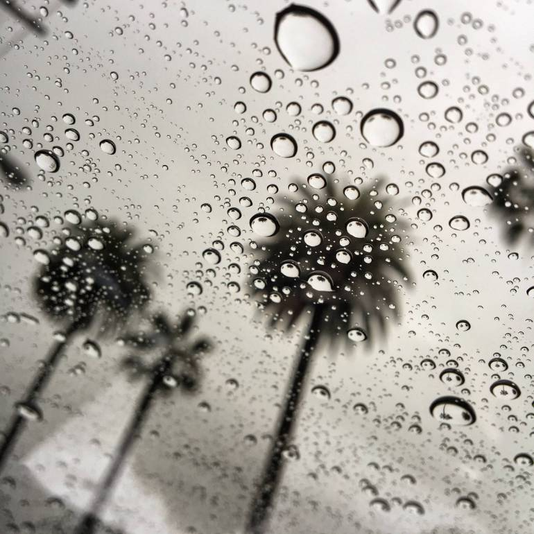 la-me-scm-raindrops-palm-trees-20160106