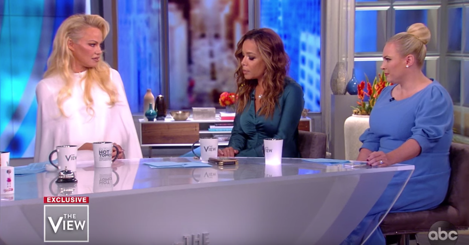 Pamela Anderson Shuts Down Meghan McCain In Fiery Exchange On 'The View'