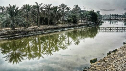 بدر شاكر السياب - جيكور - ليث حمودي