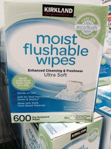 Kirkland Moist Flushable Wipes