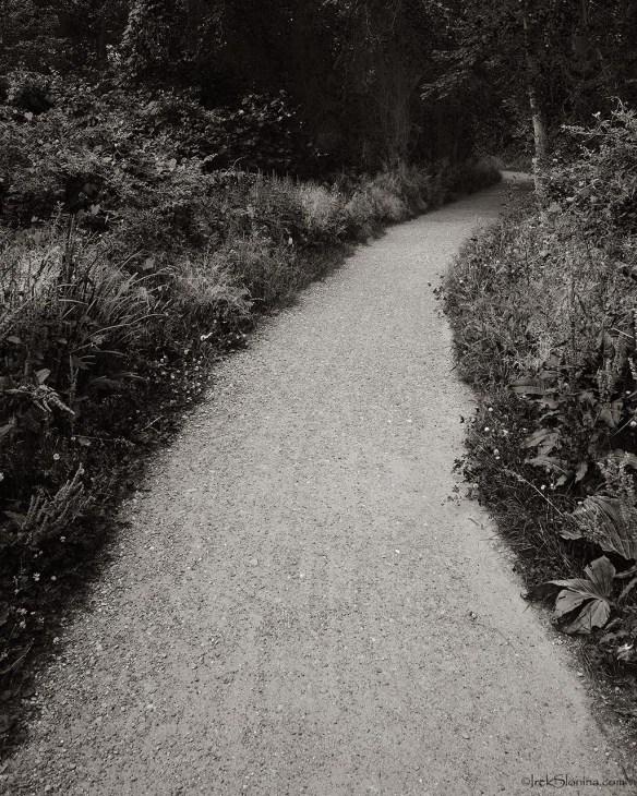 Belmont Path.