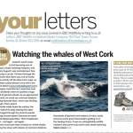 BBC Wildlife Letter of the Month