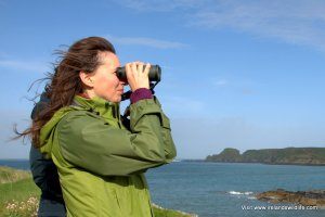 Birding, any time, any place, anywhere
