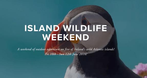 Island Bioblitz 2016