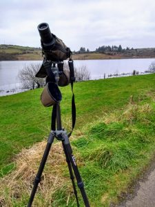 Vanguard VEO2 265CB with 50mm travel scope