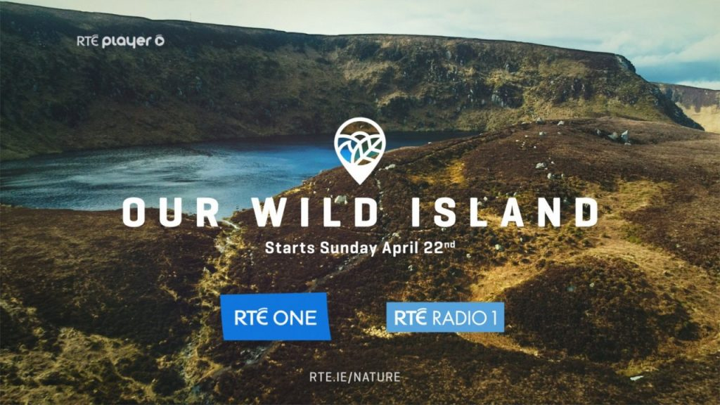 Wildlife Television and Radio Ireland