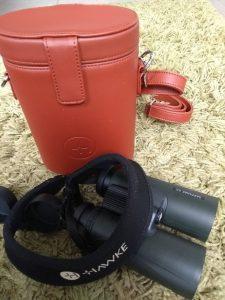 Sapphire ED Leather Case