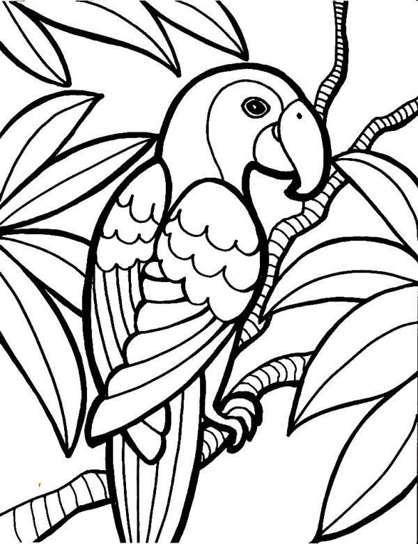 Красивые картинки для рисования | БАТИК и Я