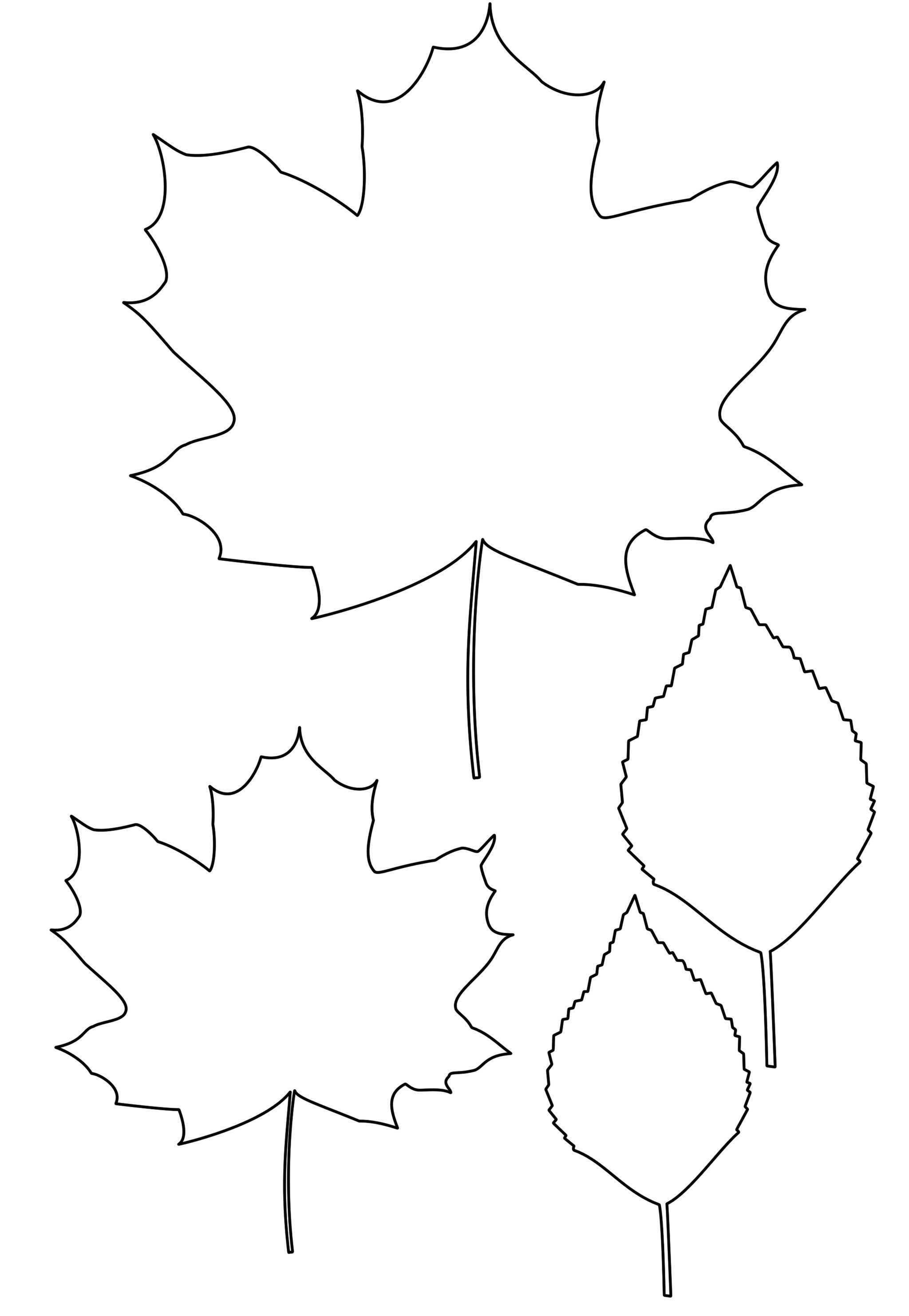 находится картинка трафарета листочками ходневич был обучен