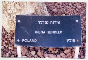 Irena Sendler was recognized by Yad Vashem for her work in rescue during the Holocaust. Here is her tree at the entrance of Yad Vashem.