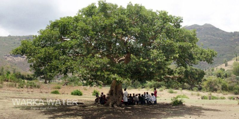warka-water-tree