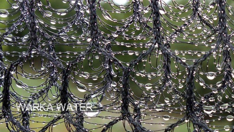 warka-water-water