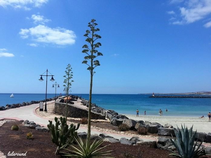 fuerteventura-playa