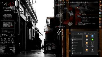Ubuntu 13.04 dev