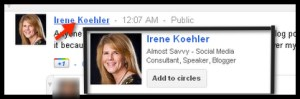 google hovercard add to circles irene koehler - google+ hovercard add to circles irene koehler