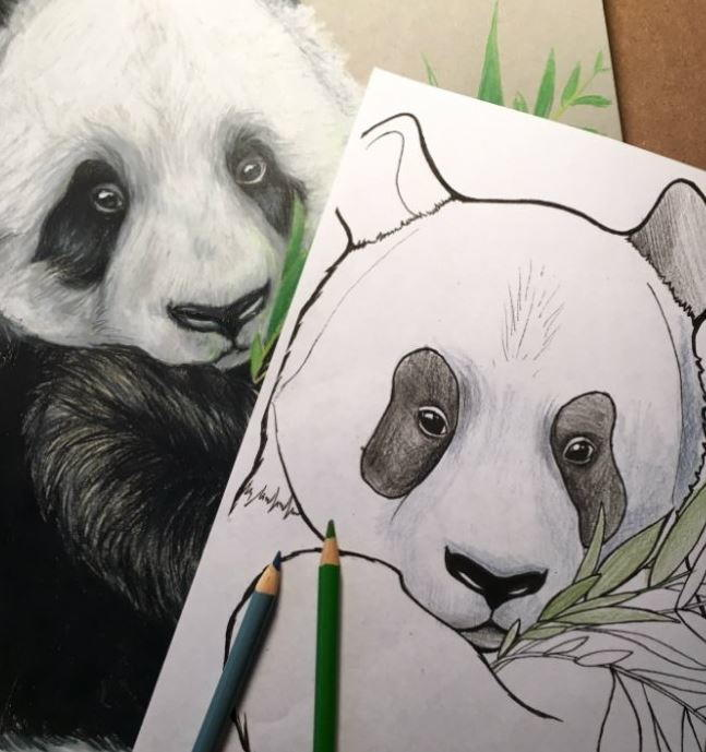 Panda Printable Coloring Pages For Kids