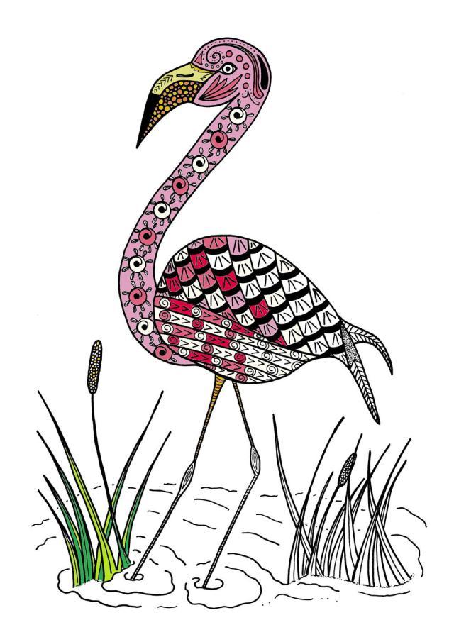 Graceful Flamingo Adult Coloring Page  FaveCrafts.com