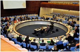 UNRSC on-line plenary meeting
