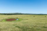 Uruguayan farmers commonly dig watering holes on their land to capture rainfall during the wet seasons. Francesco Fiondella