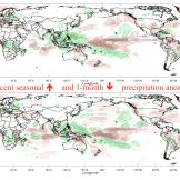 Recent precipitation anomalies, from the IRI Data Library.