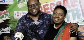 Government funds Reggae