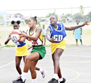 Gregory Park White Horses among winners in Round-of-16 in the INSPORTS Primary School Netball
