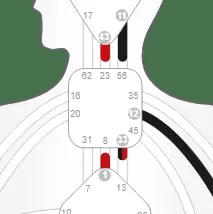 Human Design throat center