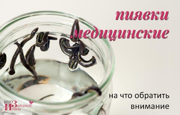 indiferent dacă ați ajutat lipitori în varicoză)