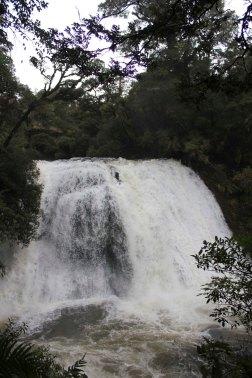 Lake Waikaremoana (29)_1