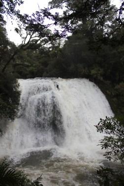 Lake Waikaremoana (29)
