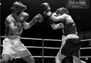 FINAL Entry List – 221 boxers enter National Elite Championships